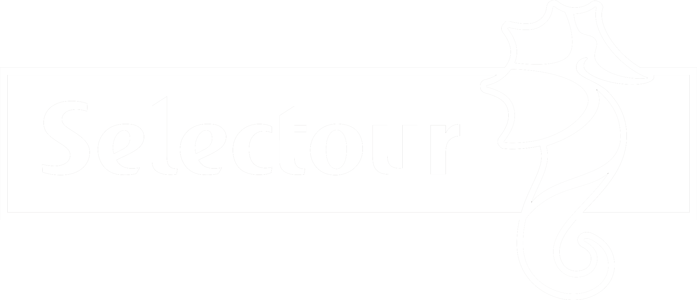 logo_selectour_footer