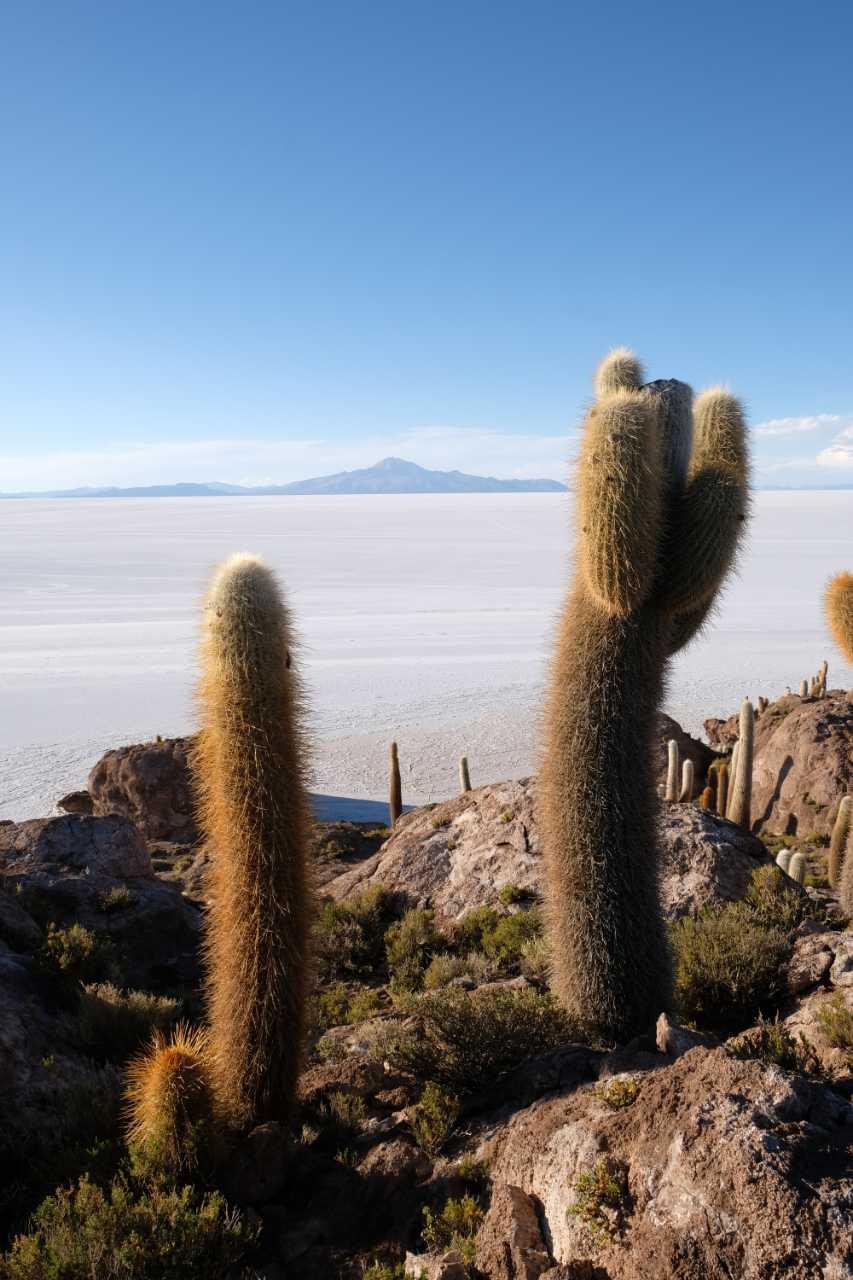 Découvrez le Salar d'Uyuni en participant au road trip Harley en Amérique du Sud Gran Fuga organisé par Road Trip Factory : Uruguay - Argentine - Bolivie - Chili