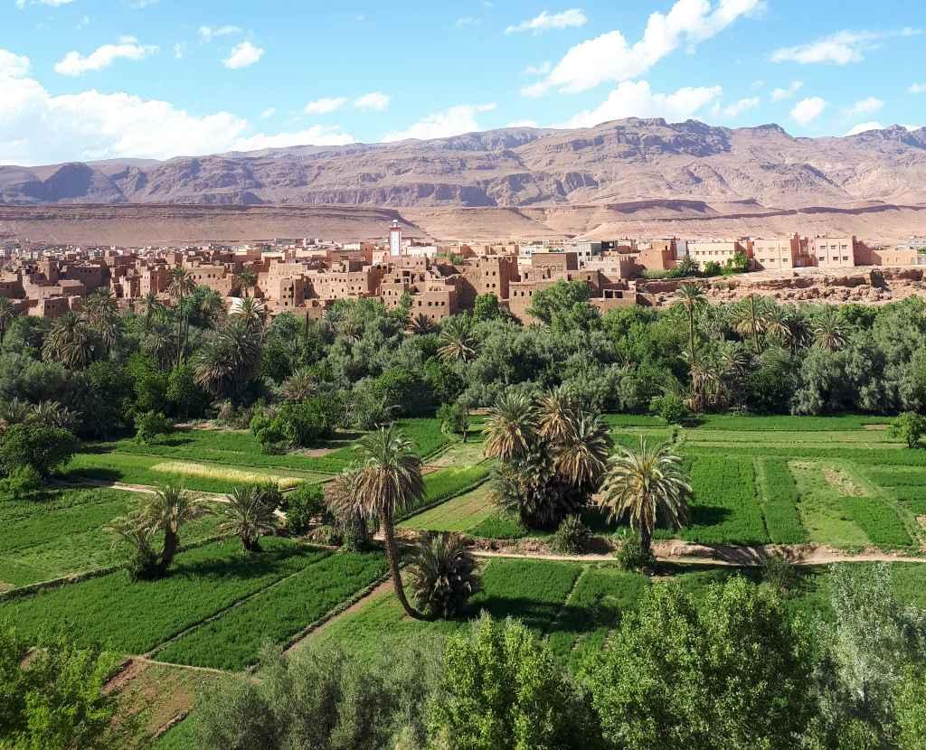 Les jardins de Tinghir au Maroc